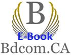 Blog: E-Book