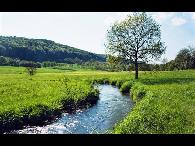 creeks-1280x800